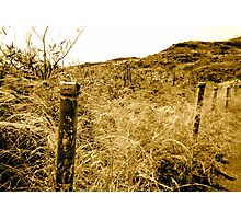 Memory of a fence Photographic Print