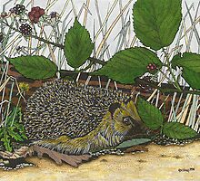 Hedgehog by gooding