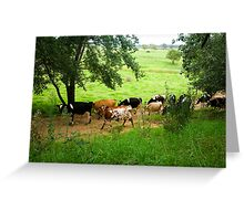 Milking time Greeting Card