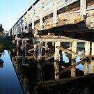 Browns Bridge by max cooper