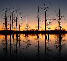 Bayou Sunset 2 by Cliff Worsham