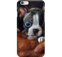 Safe In The Arms Of Love - Puppy Art iPhone Case/Skin