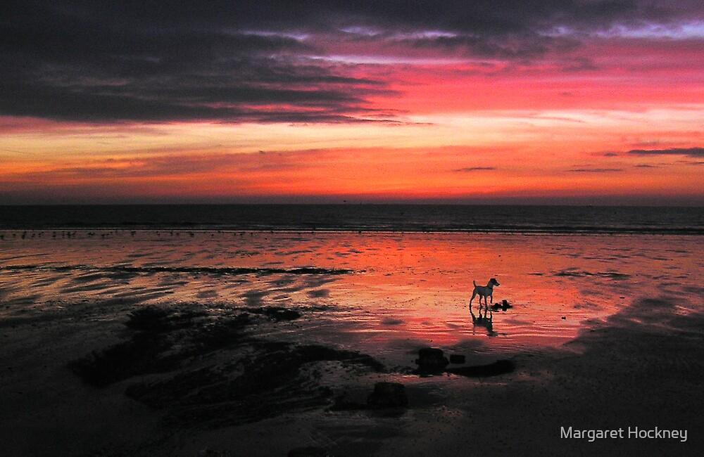Morning glory on Bridlington beach. by Margaret Hockney