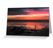 Morning glory on Bridlington beach. Greeting Card