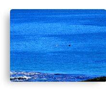 Distant Diving Dolphins......... Canvas Print