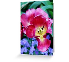 Pink, Yellow And Blue Flowers Greeting Card