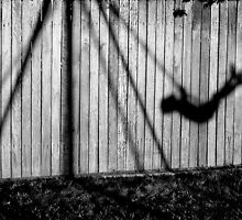 Shadow Play by Annette Blattman