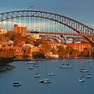 Amber - Berrys Bay - Sydney Harbour, Sydney Australia by Philip Johnson
