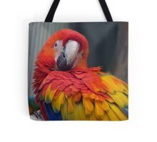 I Promise...I Haven't Seen Bob At All...- Macaw - NZ Tote Bag
