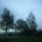 Rain by Kasia Nowak