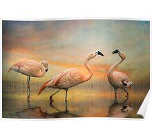 Flamingo Dusk Poster