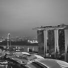 Marina Bay Sands Skyline by Craig Goldsmith