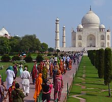 the Taj by BethKidd