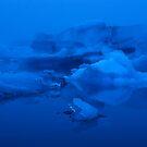 Floating Icebergs by Kasia Nowak