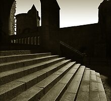 Steps of Vitre Castle by ragman