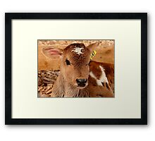 Umm.. If I Win The Beauty Pageant...I Will Promote World Peace...- Calf - NZ Framed Print