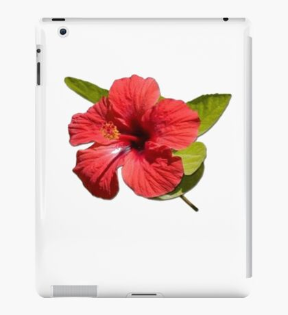 A Red Hibiscus Flower Isolated On White Background  iPad Case/Skin