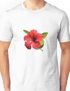 A Red Hibiscus Flower Isolated On White Background  Unisex T-Shirt