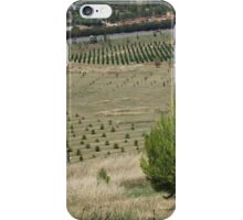 Gift from the bush fires, Canberra ACT iPhone Case/Skin