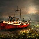 On the Estuary by Tarrby