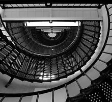 Bottom Up by Dennis Jones - CameraView