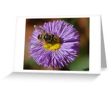 The bee and the pollen Greeting Card