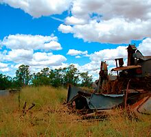 Trashed - Country NSW , Australia by Philip Johnson