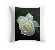 Soft White Rose Throw Pillow