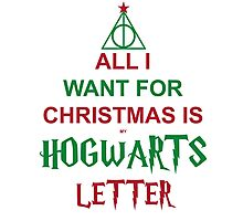 All I want for Christmas is my Hogwarts letter Photographic Print