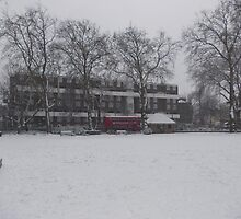 Modern block and trees in the snow by Richmondie