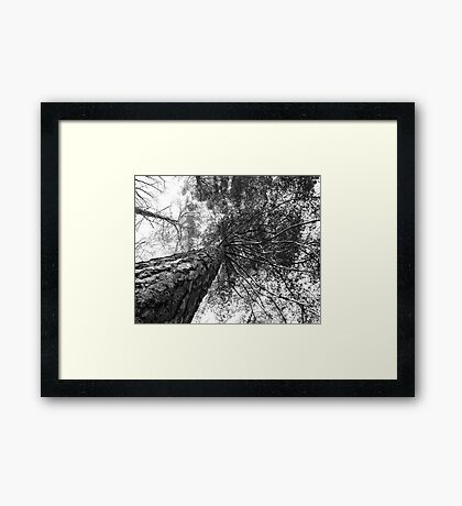 Upward Trend Framed Print