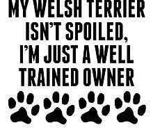 Well Trained Welsh Terrier Owner by kwg2200
