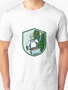Fruit Picker Worker Picking Plum Shield T-Shirt