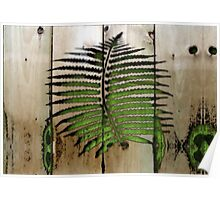 Fern Carving Poster