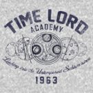 Time Lord Academy V2 by Arinesart