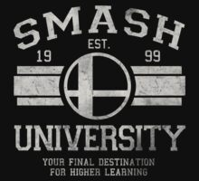 Smash University V2 by Arinesart