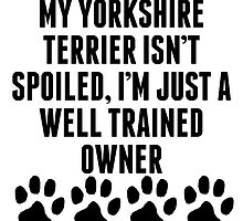 Well Trained Yorkshire Terrier Owner by kwg2200