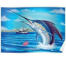 Whiplash - Sailfish Poster