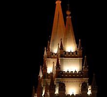 Salt Lake Temple - East Spires by Ryan Houston