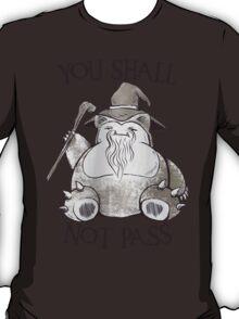 You Shall Not Pass T-Shirt