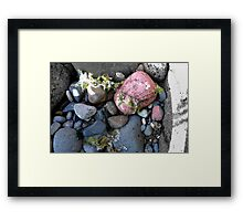 Coloured rocks, Sandringham Beach Framed Print