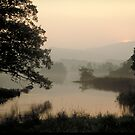 Mist Over Ullswater by Larry149