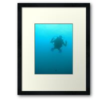 Everything is FINE ! Framed Print