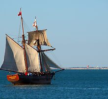 It could be a Pirate Ship by rflower