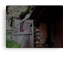 Haunted (side view; enhanced) Canvas Print