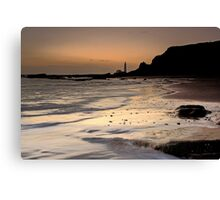 Waveswept Canvas Print
