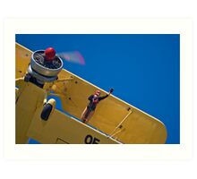 Wing Walker Flyby Art Print