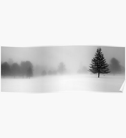 Bridgton Highlands - Trees In Fog and Snow Poster