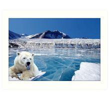 NA749-Arctic Monarch Art Print