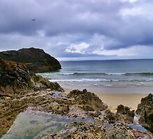 Scotland - Looking Out To Sea Over The Rocks by Joel Kempson